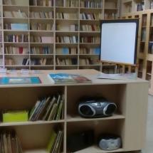 Библиотека данас